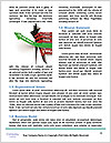 0000073766 Word Template - Page 4