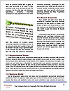 0000073771 Word Template - Page 4