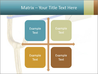 0000073772 PowerPoint Templates - Slide 37