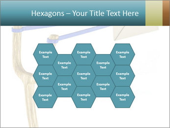 0000073772 PowerPoint Templates - Slide 44