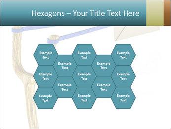 0000073772 PowerPoint Template - Slide 44