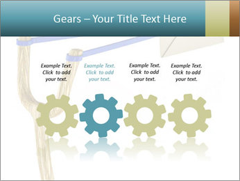 0000073772 PowerPoint Templates - Slide 48