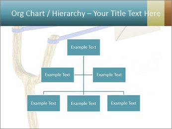 0000073772 PowerPoint Template - Slide 66