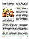 0000073782 Word Template - Page 4