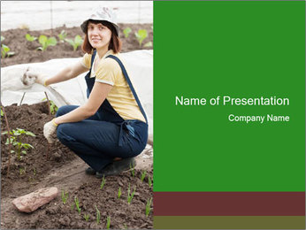 0000073798 PowerPoint Template
