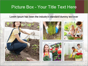 0000073798 PowerPoint Template - Slide 19