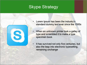 0000073798 PowerPoint Template - Slide 8