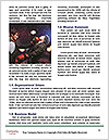 0000073800 Word Template - Page 4