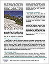 0000073804 Word Templates - Page 4
