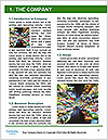0000073805 Word Template - Page 3