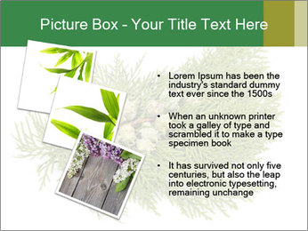 0000073806 PowerPoint Templates - Slide 17