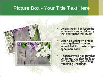 0000073806 PowerPoint Templates - Slide 20