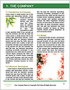 0000073806 Word Template - Page 3
