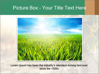 0000073808 PowerPoint Template - Slide 15