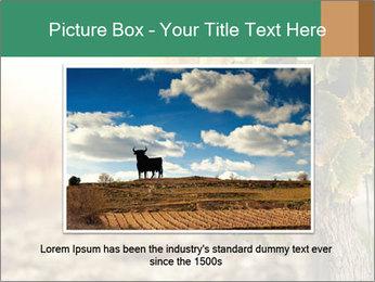 0000073808 PowerPoint Templates - Slide 16
