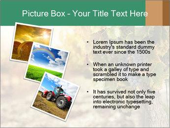 0000073808 PowerPoint Templates - Slide 17