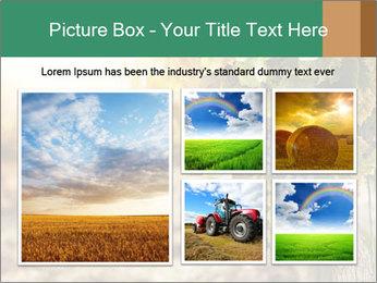 0000073808 PowerPoint Templates - Slide 19