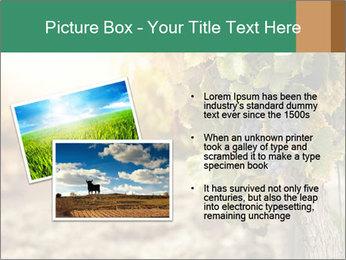 0000073808 PowerPoint Templates - Slide 20