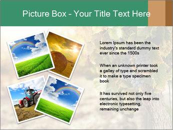 0000073808 PowerPoint Templates - Slide 23