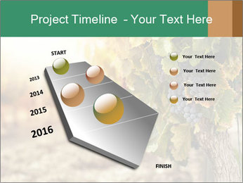 0000073808 PowerPoint Template - Slide 26