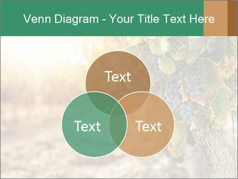 0000073808 PowerPoint Templates - Slide 33