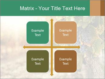 0000073808 PowerPoint Templates - Slide 37