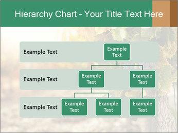 0000073808 PowerPoint Templates - Slide 67