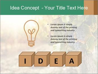 0000073808 PowerPoint Templates - Slide 80