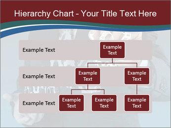 0000073812 PowerPoint Template - Slide 67