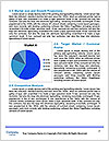 0000073828 Word Template - Page 7