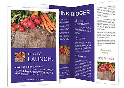 0000073830 Brochure Template