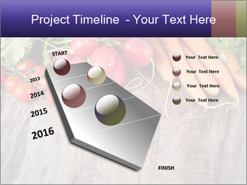 0000073830 PowerPoint Template - Slide 26