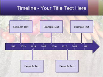0000073830 PowerPoint Template - Slide 28