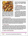 0000073831 Word Templates - Page 4