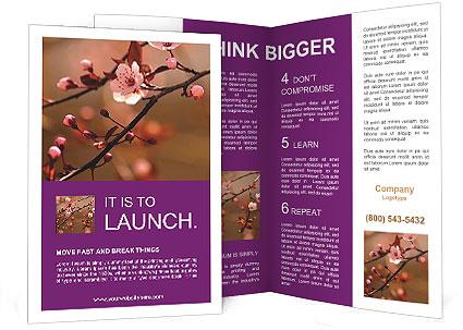 0000073833 Brochure Template
