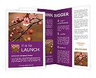 0000073833 Brochure Templates