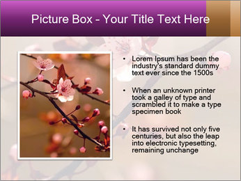 0000073833 PowerPoint Template - Slide 13
