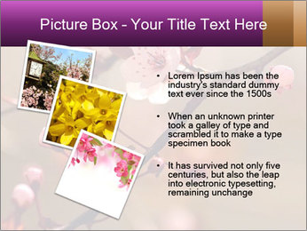 0000073833 PowerPoint Template - Slide 17