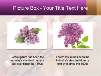 0000073833 PowerPoint Template - Slide 18