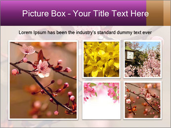 0000073833 PowerPoint Template - Slide 19