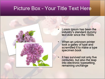 0000073833 PowerPoint Template - Slide 20