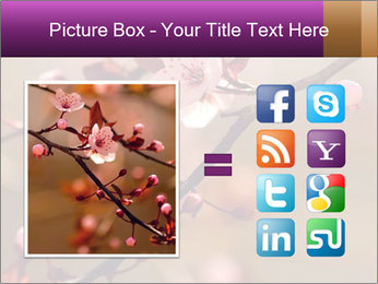 0000073833 PowerPoint Template - Slide 21