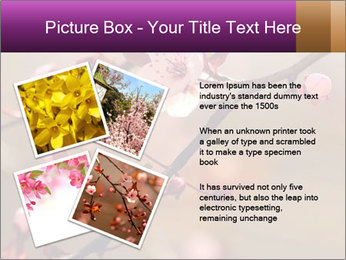 0000073833 PowerPoint Template - Slide 23