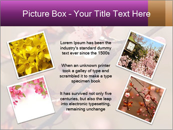 0000073833 PowerPoint Template - Slide 24