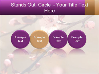 0000073833 PowerPoint Template - Slide 76