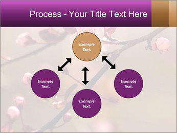 0000073833 PowerPoint Template - Slide 91