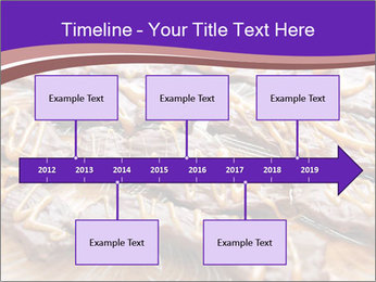0000073839 PowerPoint Template - Slide 28