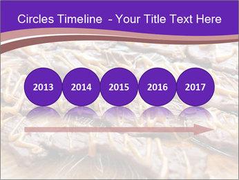 0000073839 PowerPoint Template - Slide 29