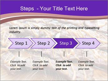 0000073839 PowerPoint Template - Slide 4