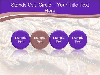 0000073839 PowerPoint Template - Slide 76